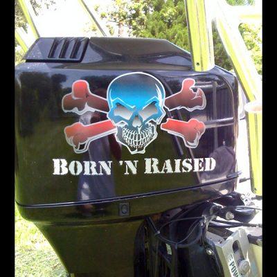 Born N Raised